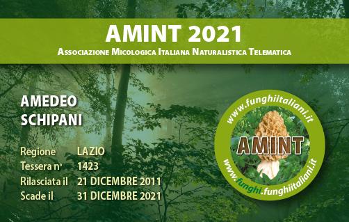 Tessera AMINT 1423 2021.jpg
