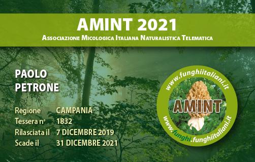 Tessera AMINT 1832 2021.jpg