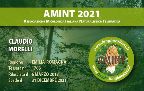 Tessera AMINT 1768 2021.jpg
