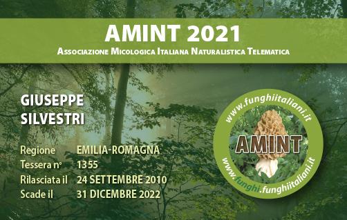Tessera AMINT 1355 2022.jpg