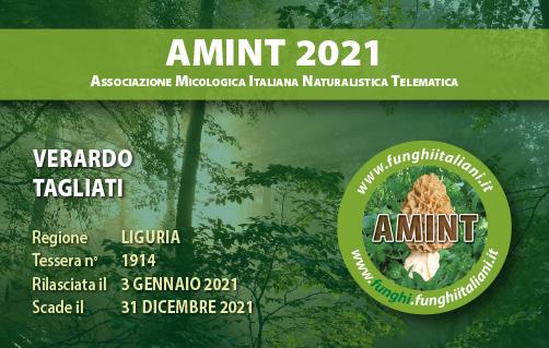 Tessera AMINT 1914 2021.jpg
