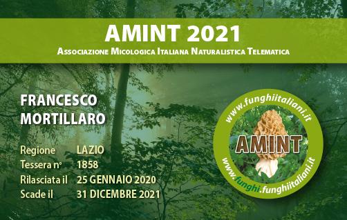 Tessera AMINT 1858 2021.jpg