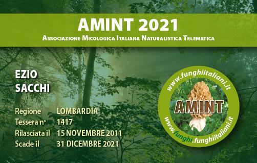 Tessera AMINT 1417 2021.jpg