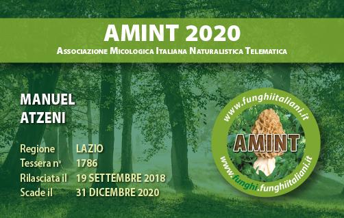 Tessera AMINT 1786 2020.jpg