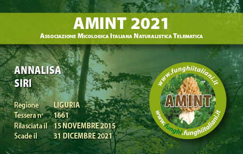 Tessera AMINT 1661 2021.jpg