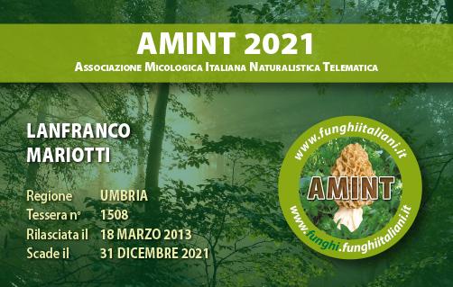 Tessera AMINT 1508 2021.jpg