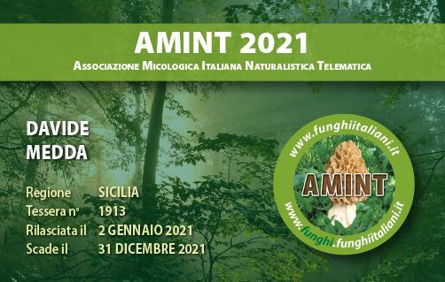 Tessera AMINT 1913 2021.jpg