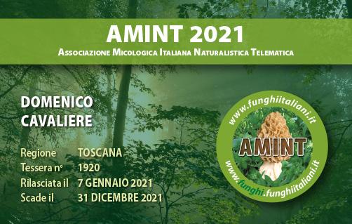 Tessera AMINT 1920 2021.jpg
