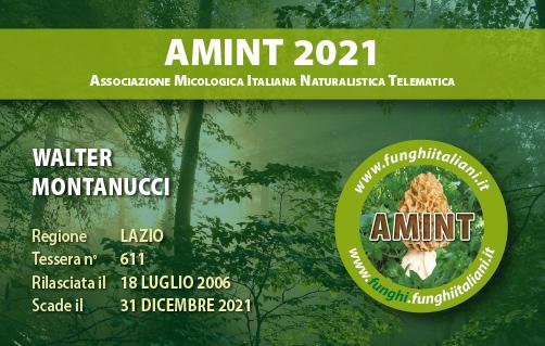 Tessera AMINT 0611 2021.jpg