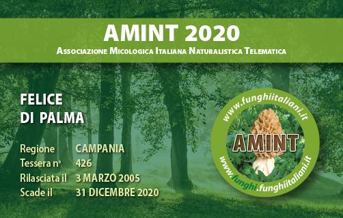 Tessera AMINT 0426 2020.jpg