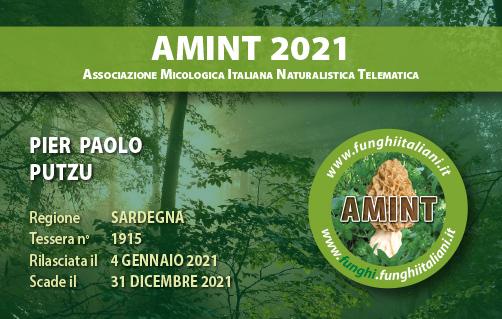 Tessera AMINT 1915 2021.jpg