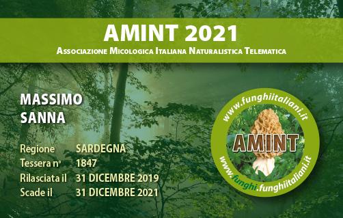 Tessera AMINT 1847 2021.jpg
