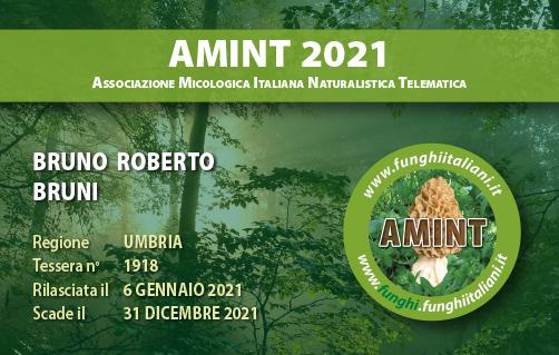 Tessera AMINT 1918 2021.jpg