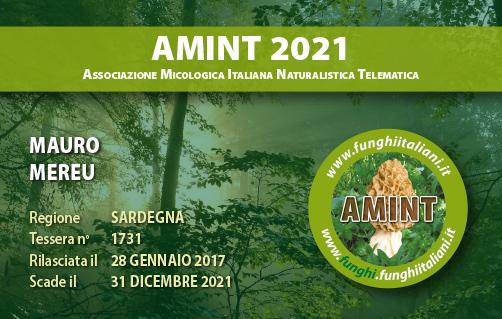 Tessera AMINT 1731 2021.jpg