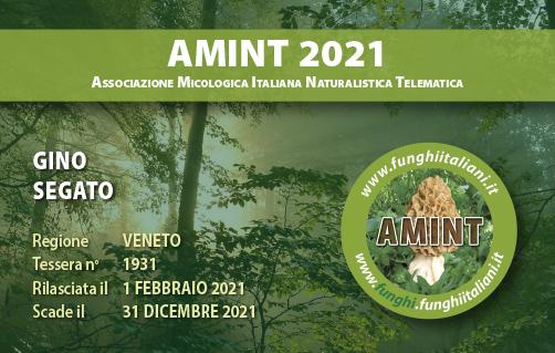 Tessera AMINT 1931 2021.jpg