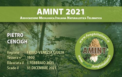 Tessera AMINT 1930 2021.jpg
