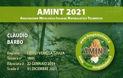Tessera AMINT 1805 2021.jpg