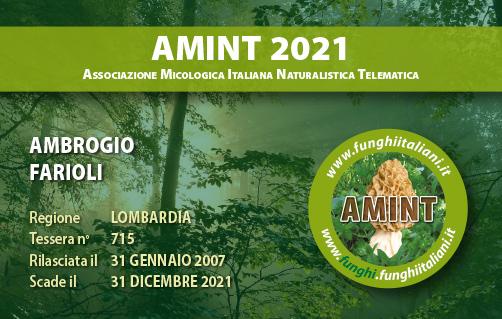 Tessera AMINT 0715 2021.jpg