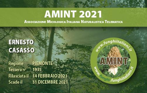 Tessera AMINT 1935 2021.jpg