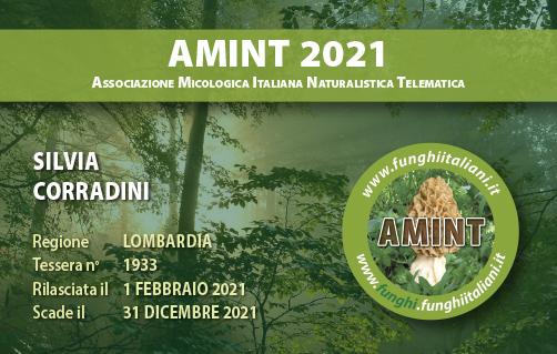 Tessera AMINT 1933 2021.jpg