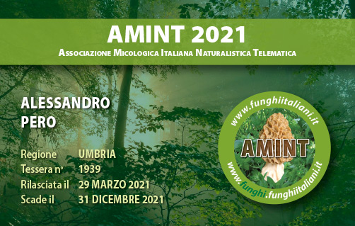 Tessera AMINT 1939 2021.jpg