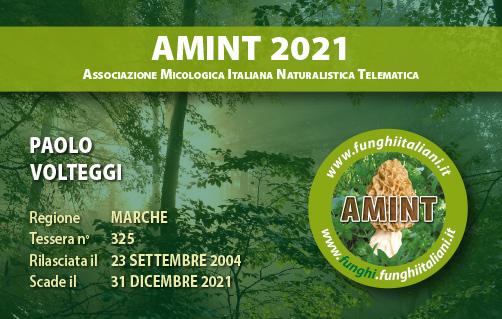 Tessera AMINT 0325 2021.jpg