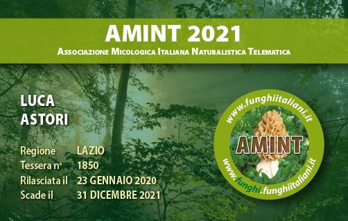 Tessera AMINT 1850 2021.jpg