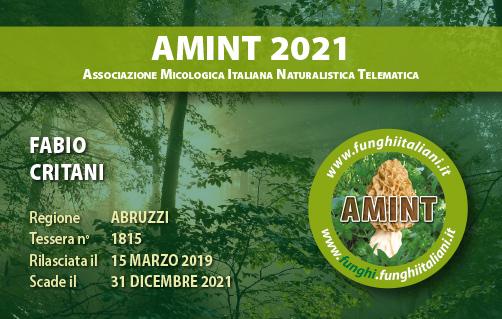 Tessera AMINT 1815 2021.jpg