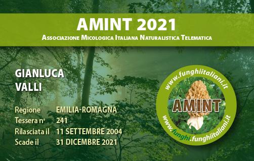 Tessera AMINT 0241 2021.jpg