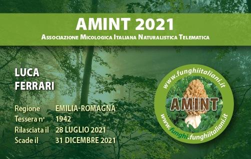 Tessera AMINT 1942 2021.jpg