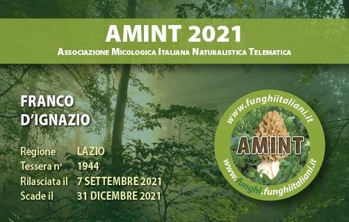 Tessera AMINT 1944 2021.jpg