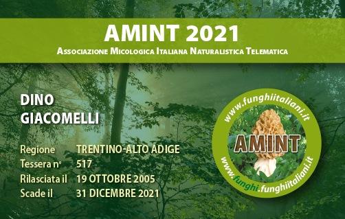 Tessera AMINT 0517 2021.jpg