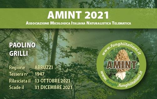 Tessera AMINT 1947 2021.jpg
